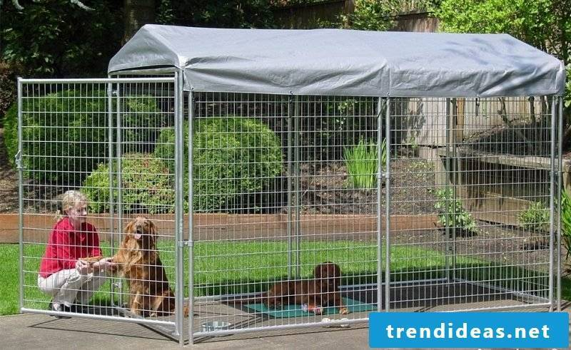 Build or buy dog ​​kennels yourself!