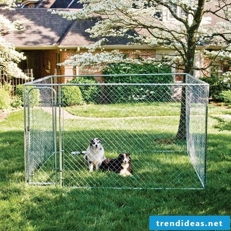 Dog kennels build themselves to their own taste!