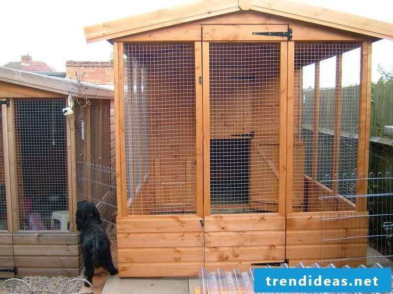 Build a great dog kennel yourself!