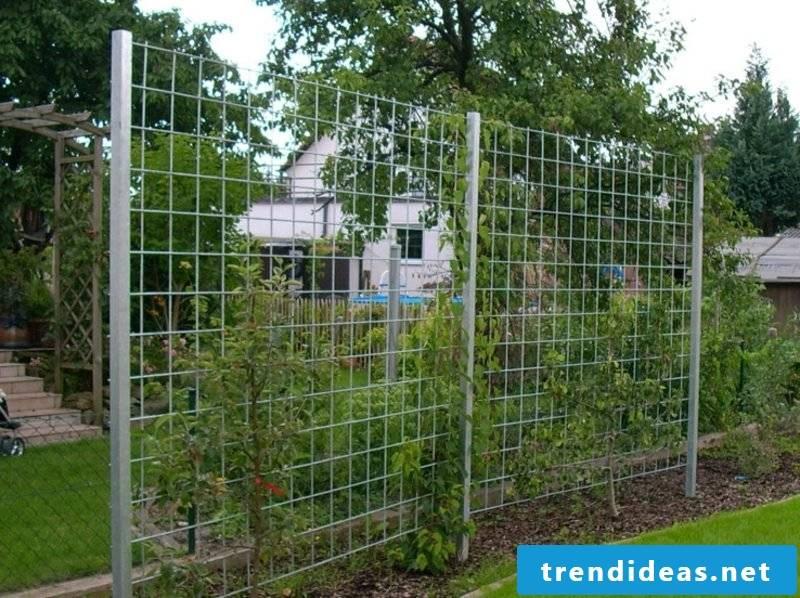 Garden trellis of steel wire privacy