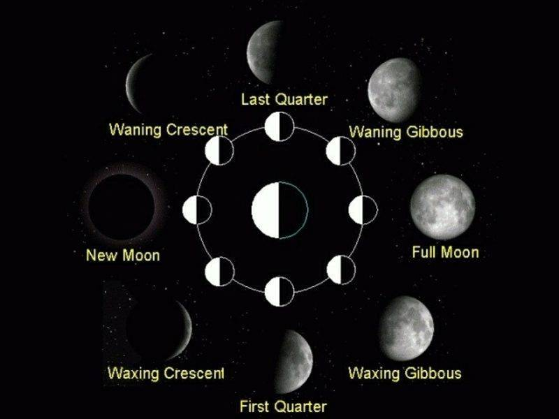 moon calendar 2015 moon phase haircutting