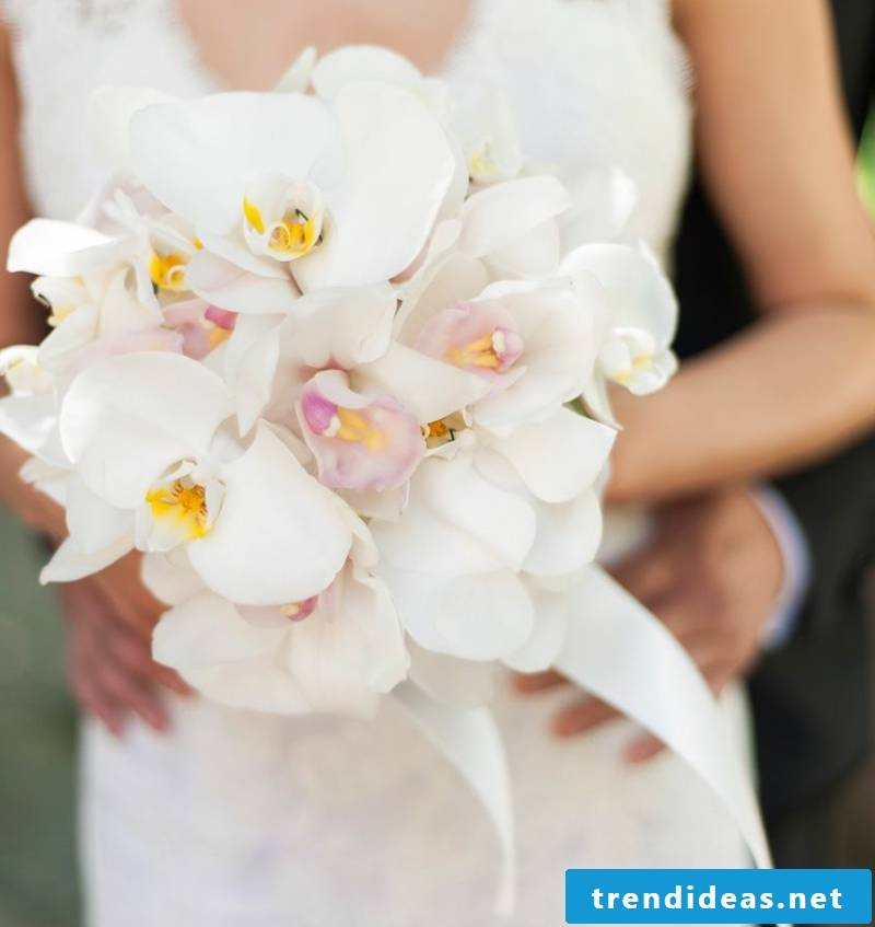 Wedding bouquet of orchids