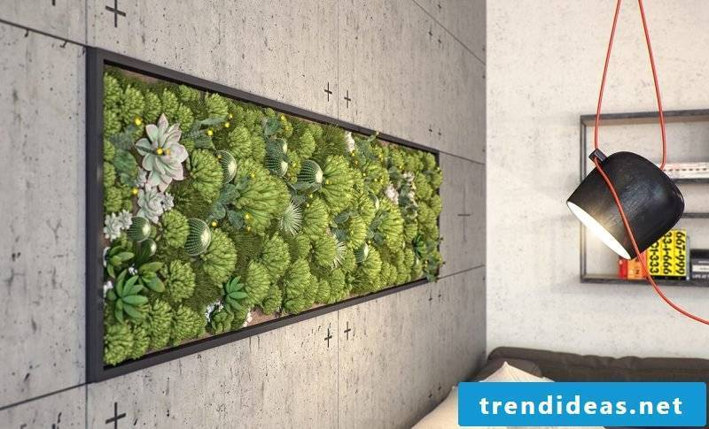Light the vertical garden