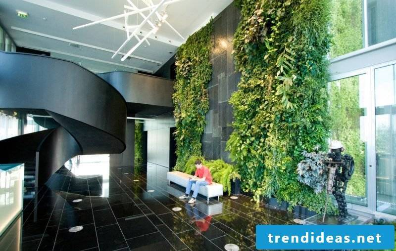As large as the vertical garden is, so high is the possibility for mold