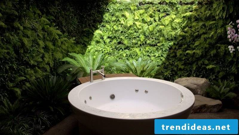 Vertical garden in the bathroom