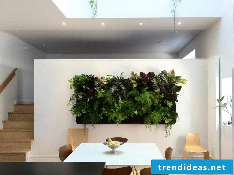 Use vertical garden only as an accent