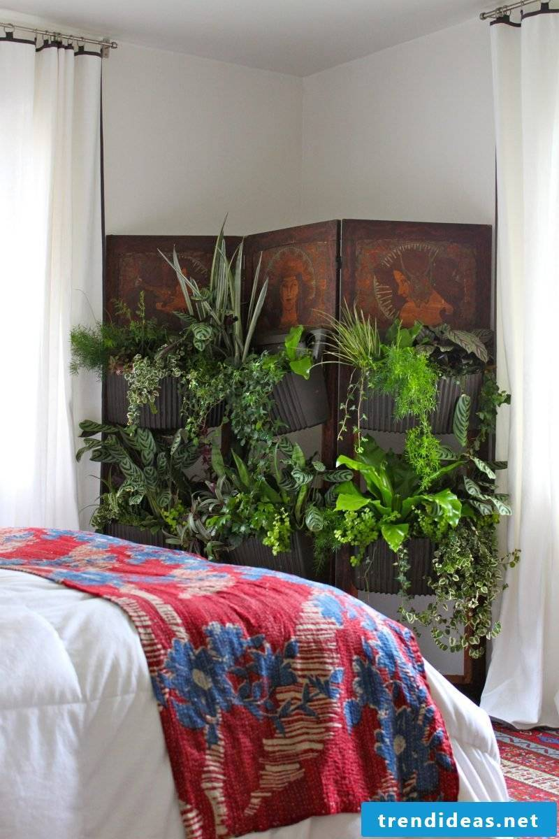 Vertical garden for bedroom