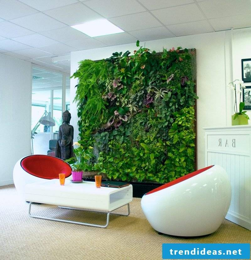 Combine vertical garden with minimalist decor