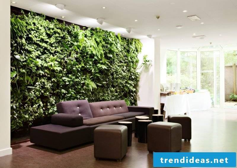 Vertical garden needs care