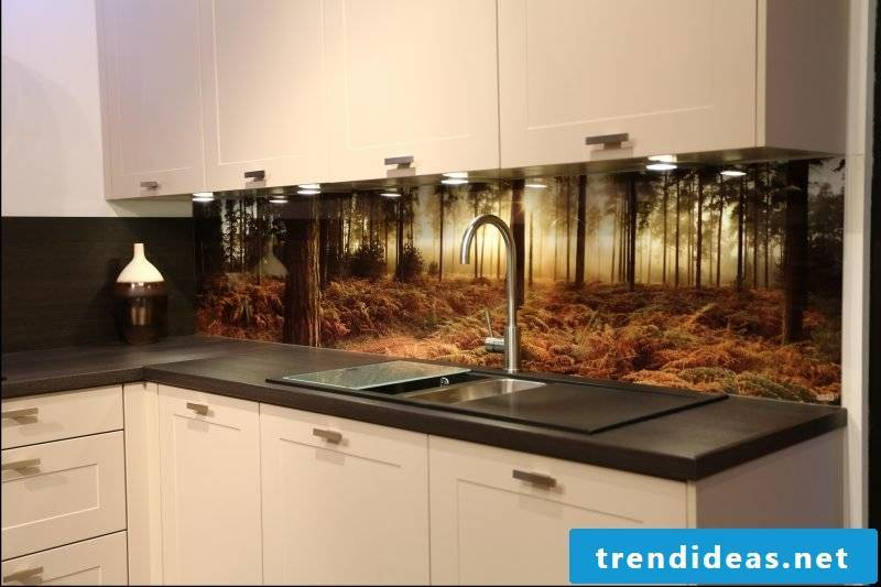 Print kitchen back wall favorably - bring nature into the kitchen