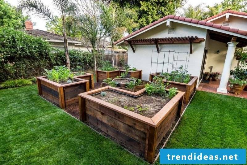 a large well-groomed kraut high bed looks elegant in the garden