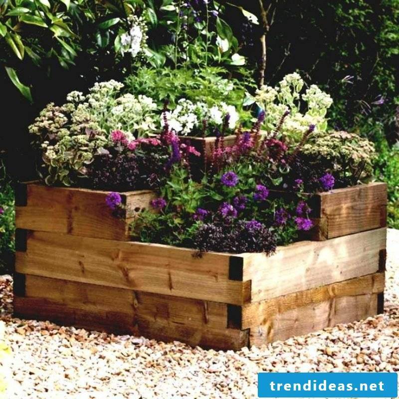 Cuttings in the sun are planted with colorful flowers and herbs