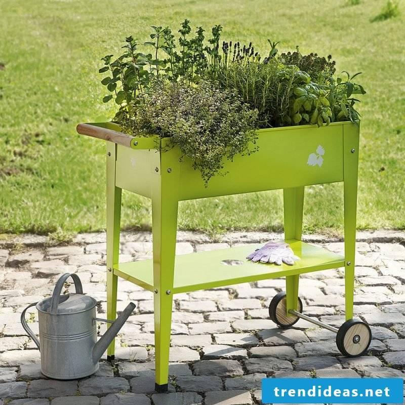 small green krautoberhochbeet is very convenient on the terrace