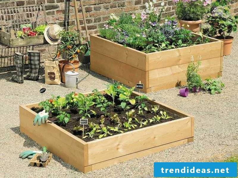 CROWN URBAN puts refreshing accents in the garden and is hardly difficult to maintain