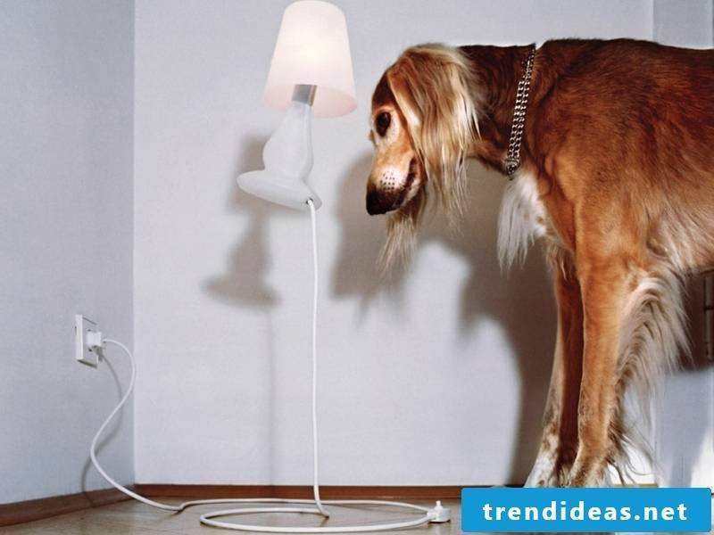 interesting lamp in the living room