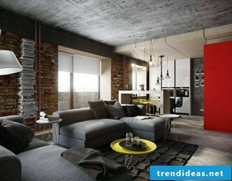 Living room industrial chic ceiling design