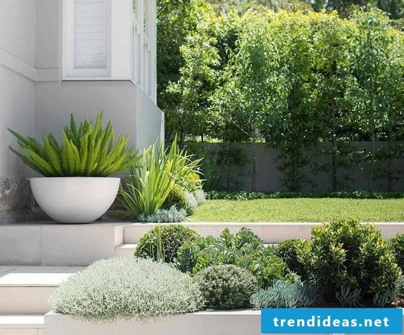 Concrete planter Garden green design