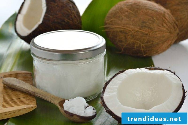Hand cream itself make ingredients coconut oil