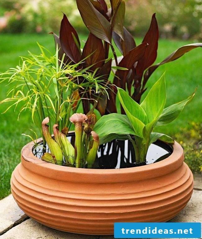 Make garden decoration yourself