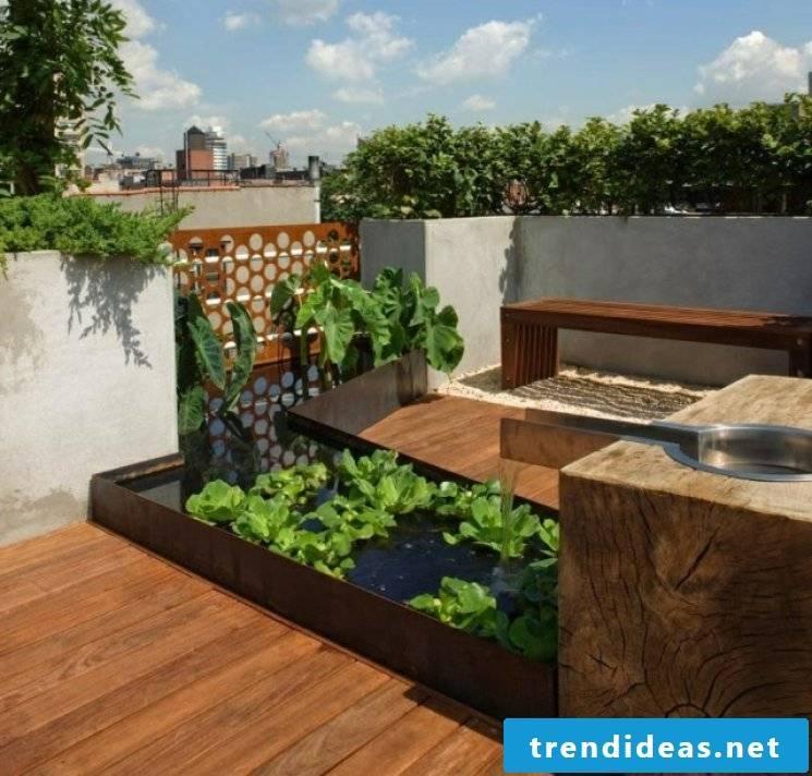 Balcony ideas for little money: mini pond in the pot