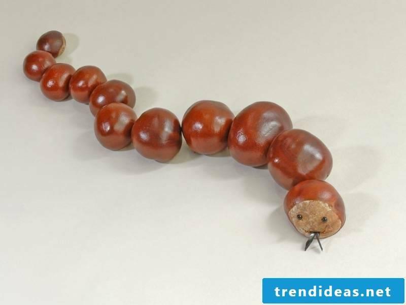 Tinker with children autumn chestnuts