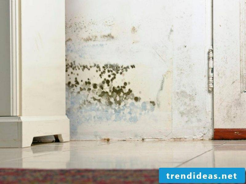 Avoid optimal hibernation in clearing mold