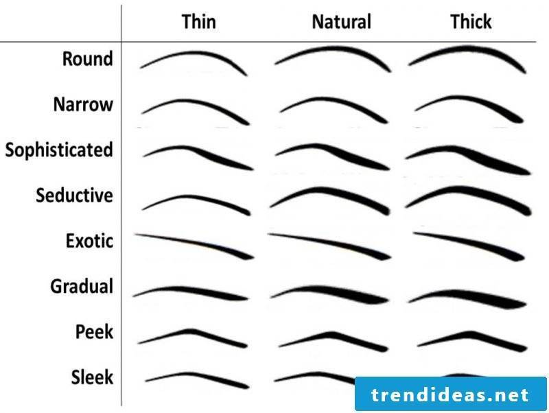 Eyebrows shapes at a glance