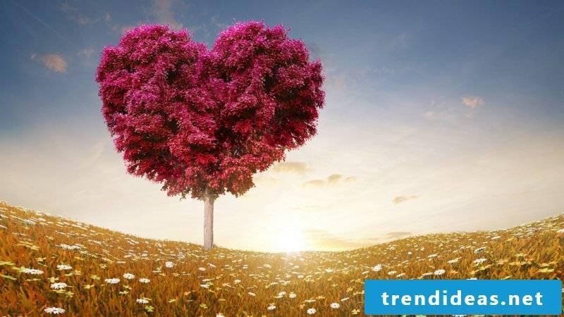 romantic ideas-images-of-love-7