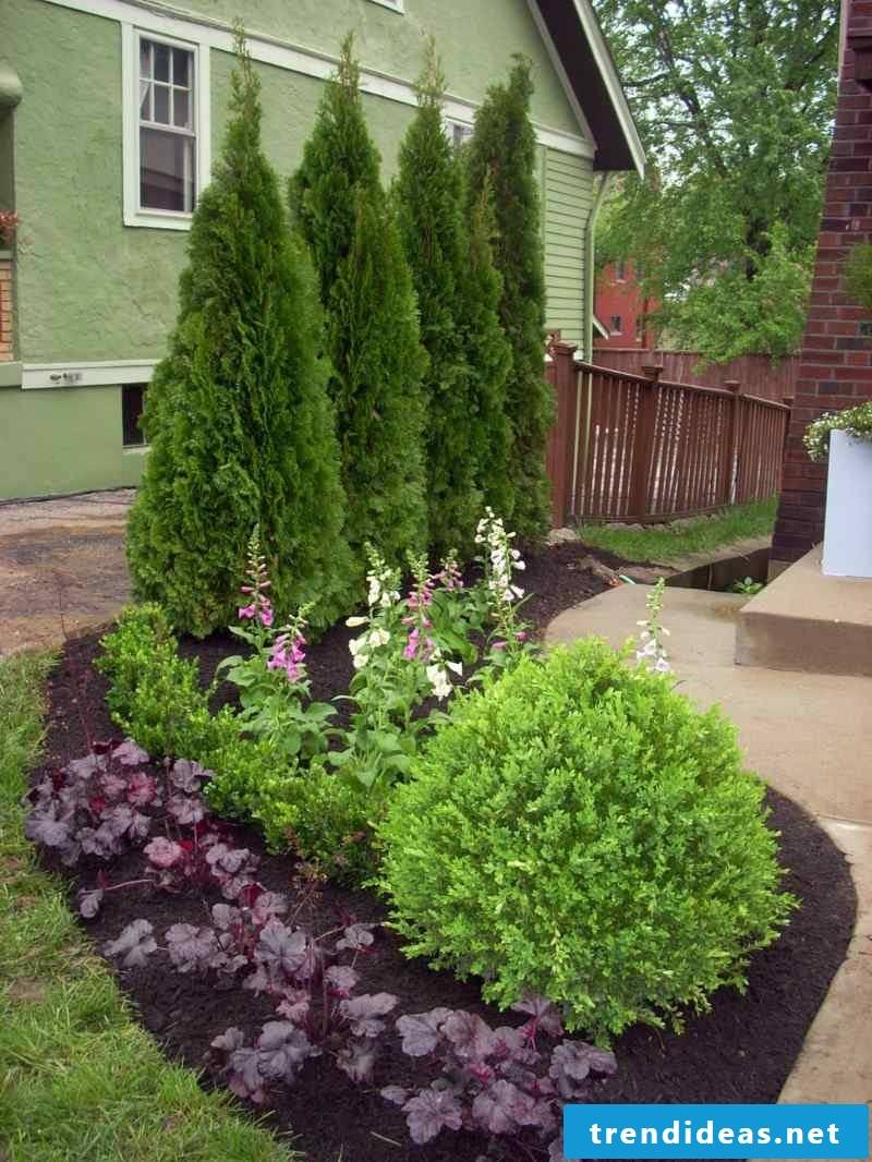 Terrace planting ideas