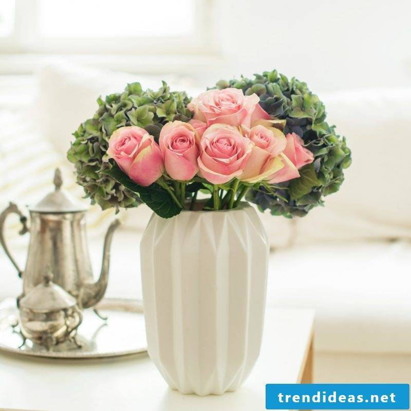 Beauty and first feelings with pink roses