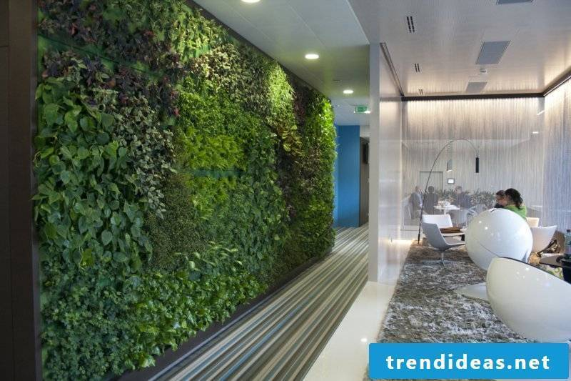 vertical garden office Vienna 2