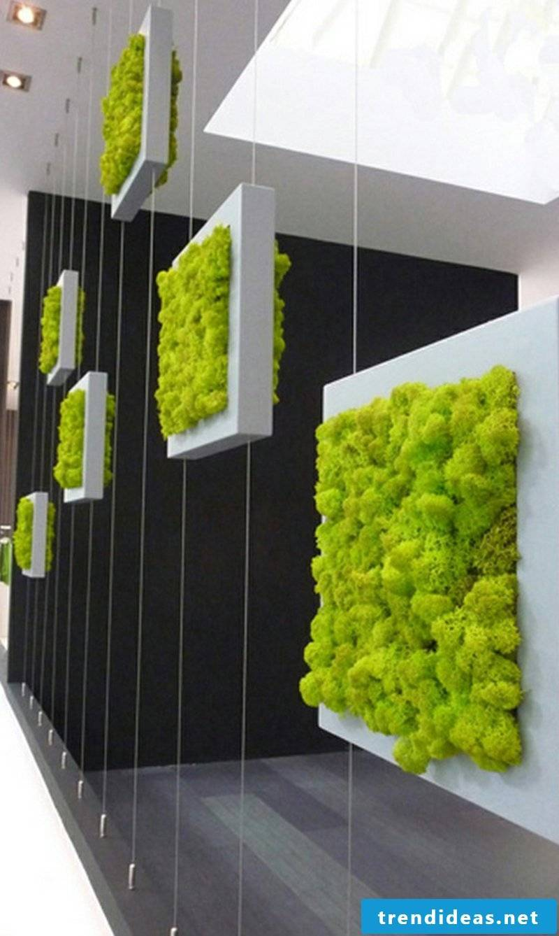 vertical garden hanging ideas