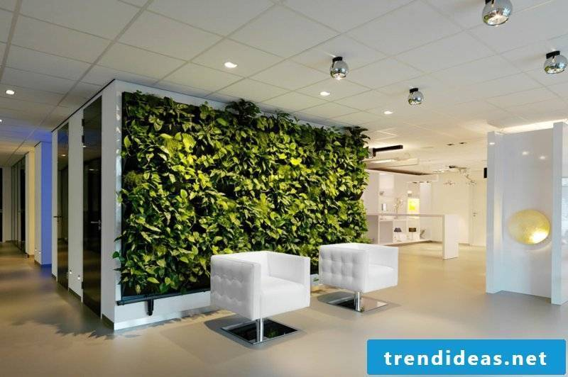 vertical garden indoor white armchair