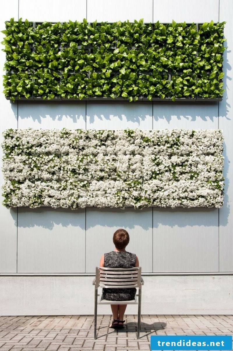 vertical garden interior decoration