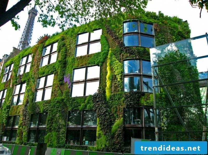 vertical garden Jardines_verticales
