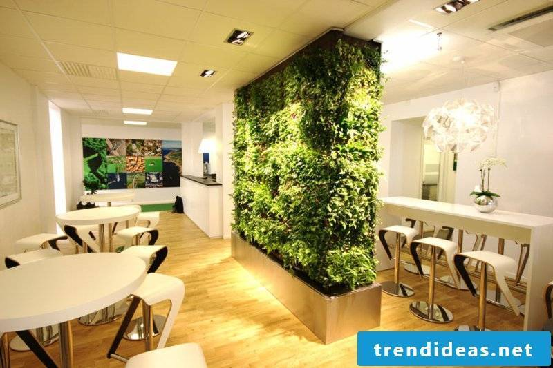 vertical garden as a modern room divider