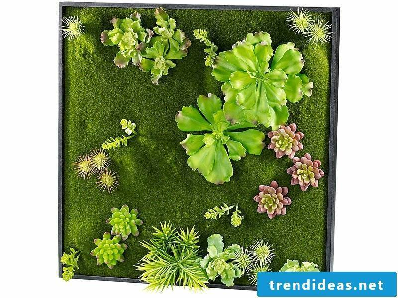 planting vertical garden moss pieces