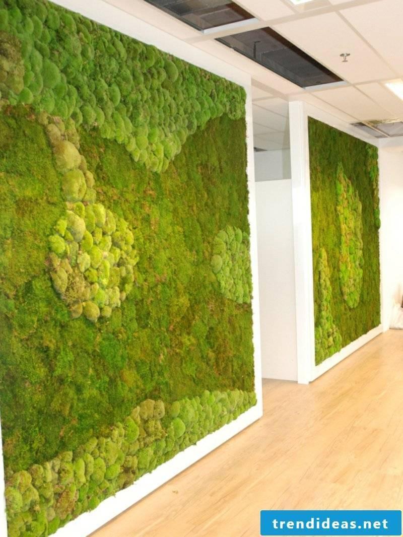 vertical garden Moss wall corridor