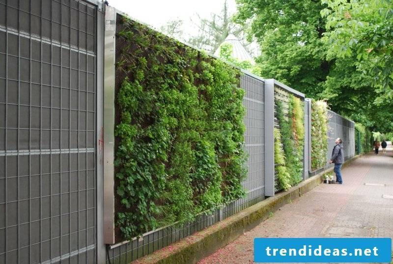vertical garden pamengarten4