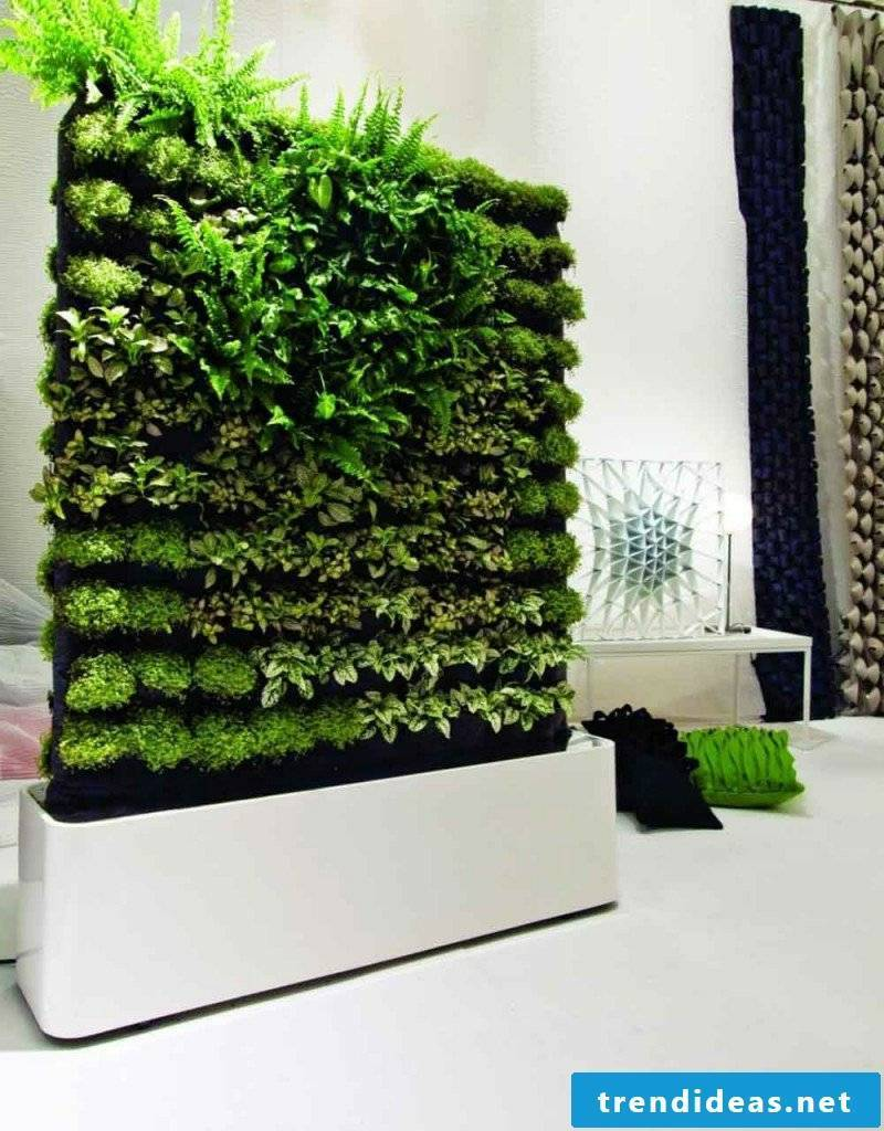 vertical garden rindoor partition wall