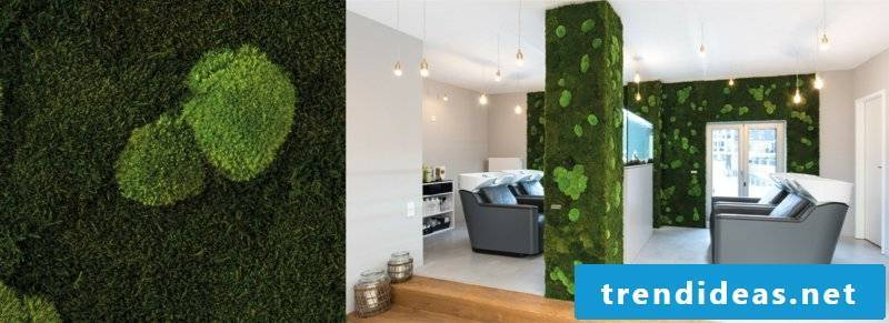 vertical garden slider forest floor
