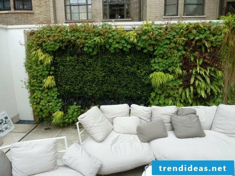 vertical garden terrace