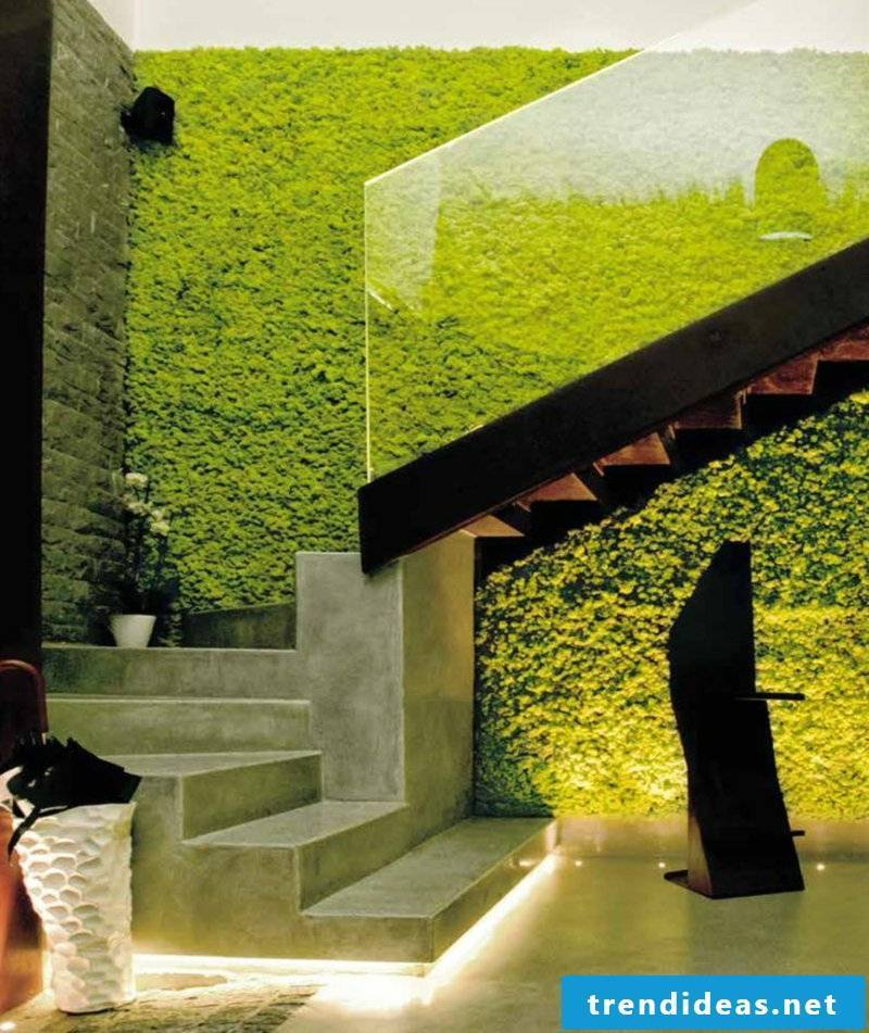 vertical garden Wall greening with Moss 4