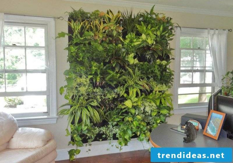 vertical-garden-living room wall green