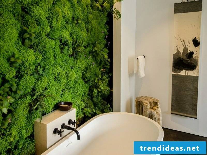 vertical garden bathroom ideas plant bathtub accent wall