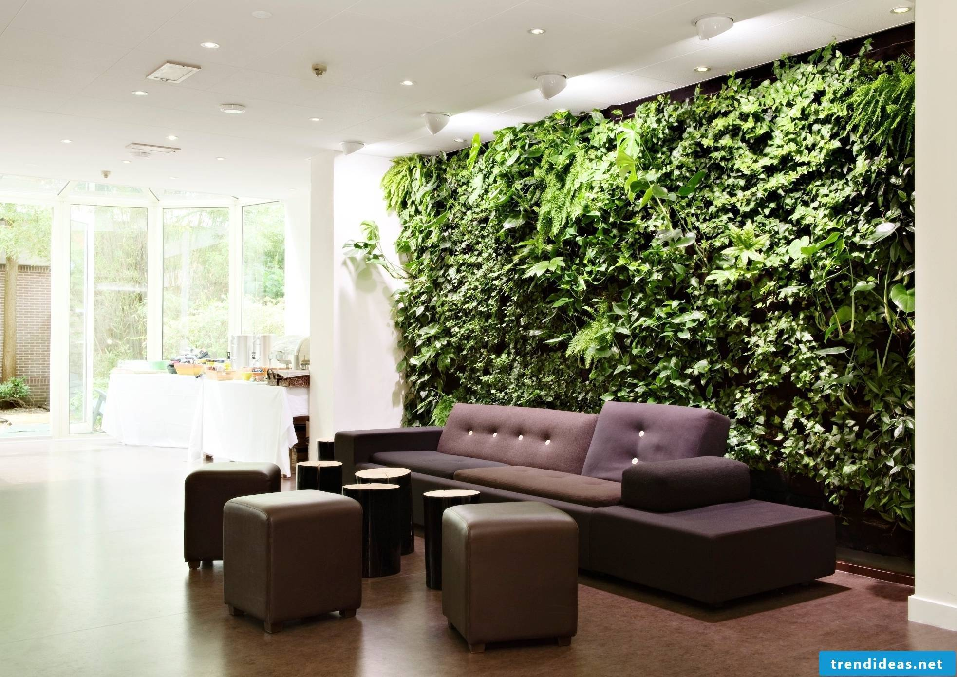 A wall - a garden