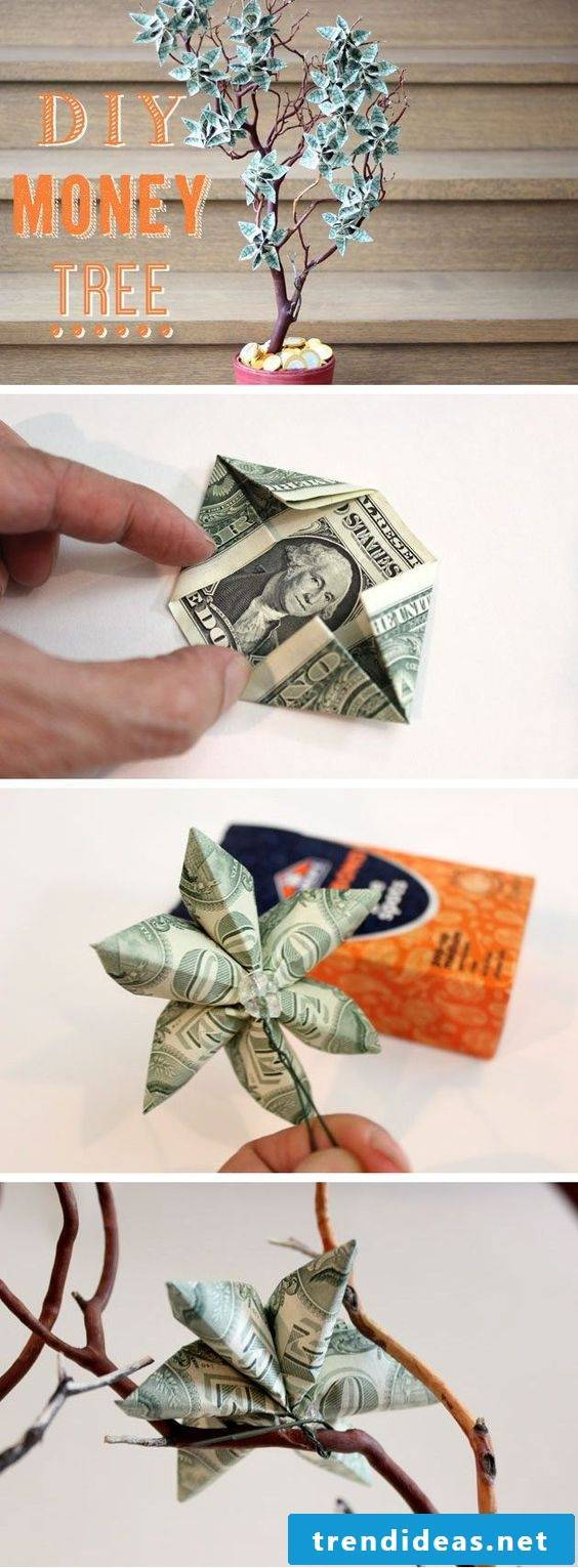 Give away money for the wedding: Make money tree yourself
